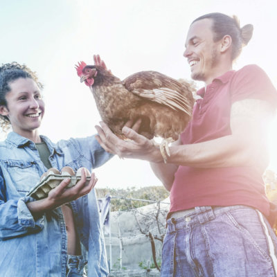Couple Farmers Holding Chicken Eggs Laughing